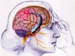 migraine-attacks