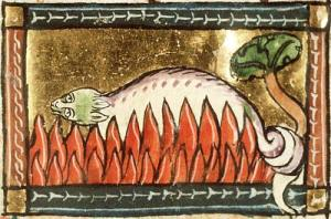 A_salamander_unharmed_in_the_fire