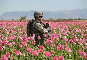 opium-soldier