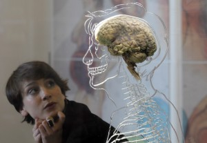 Real+Brain+Exhibit+Bristol+Science+Centre+_zDBQxAlRh6l