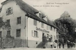 herdern_schwanen_1908