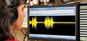 Phenom-Singing-Mice-spectrograph-631.jpg__800x600_q85_crop