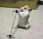 singing-mouse